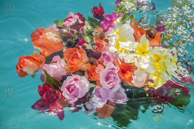 Bunches of flowers, floating and submerged in swimming pool