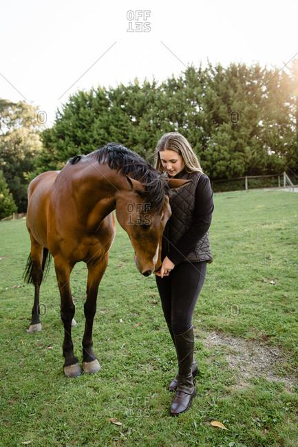 Girl hand feeding horse