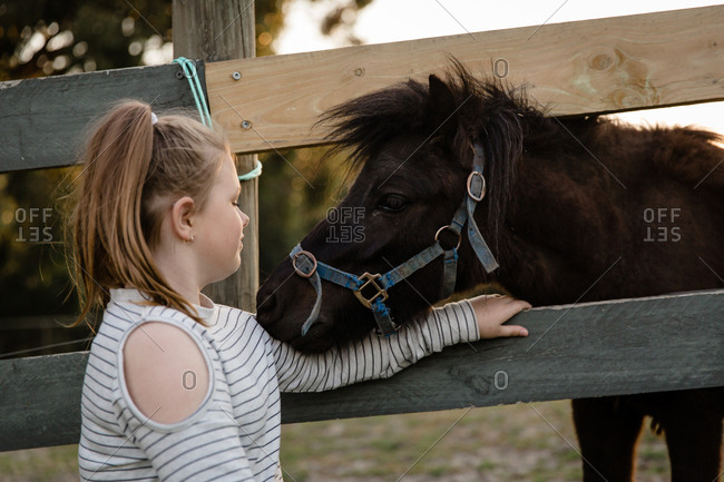 Horse embracing with girl