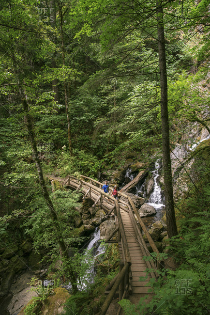 Distant view of hikers crossing wooden footbridge over stream at forest