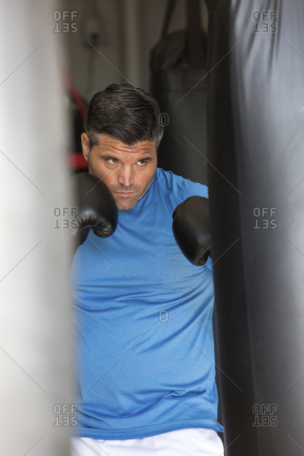 Boxer practicing in gym
