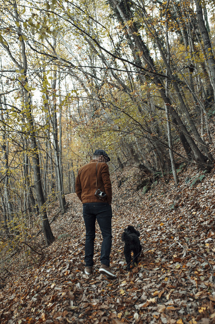 Rear view of man with dog walking in forest during autumn