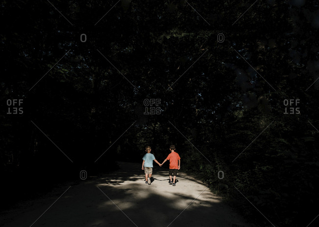 Rear view of brothers holding hands while walking on road amidst silhouette trees
