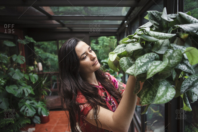 Young woman looking at plants while gardening in porch