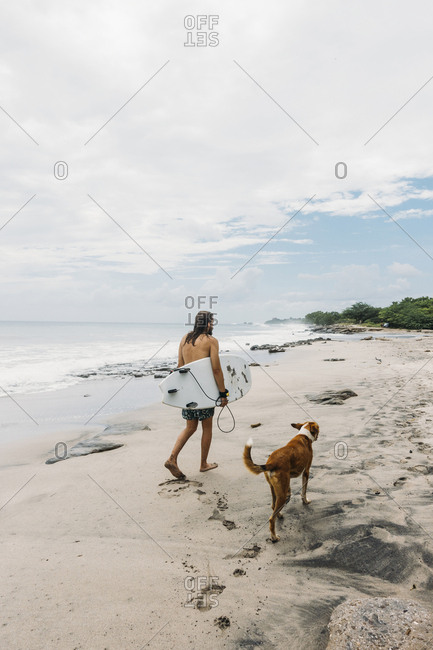Rear view of surfer with dog walking on beach