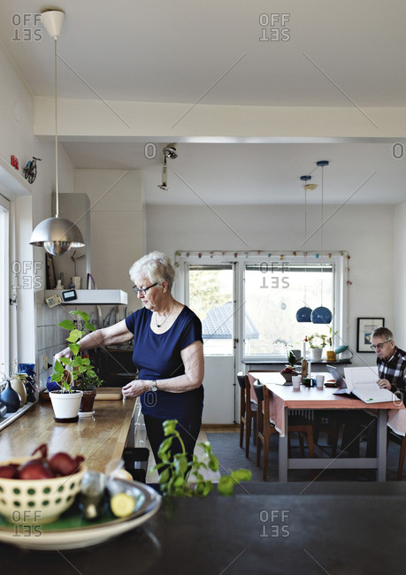 Retired senior woman watering potted plants on kitchen counter at home