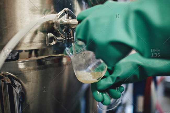 Worker wearing glove pouring beer from container in glass at brewery