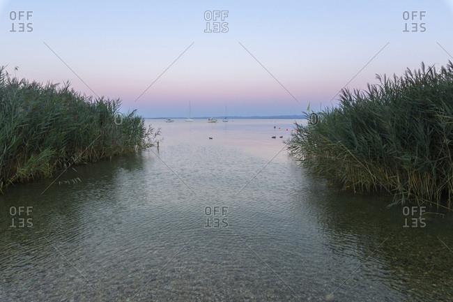 View of Lake Garda (Lago di Garda) through reeds at dawn in Bardolino in Veneto, Italy