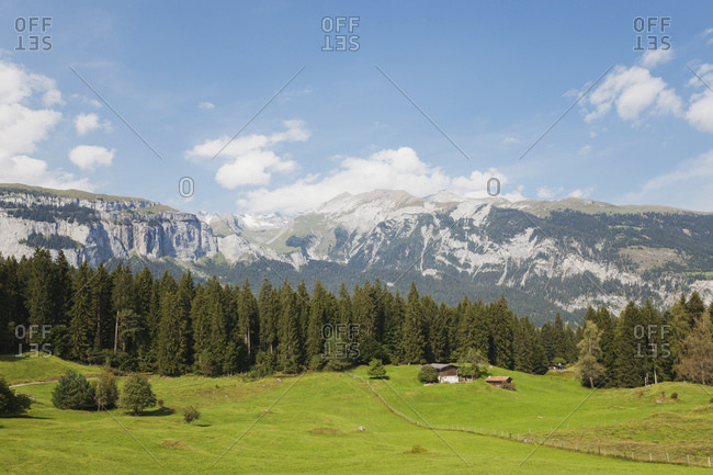 Switzerland- Grisons- Grison Alps- alpine meadows and view of Alps at Flims region