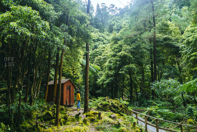 Azores- Sao Miguel- Man in the forest of Caldeira Velha