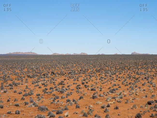 Africa- Namibia- Namib desert- desert landscape