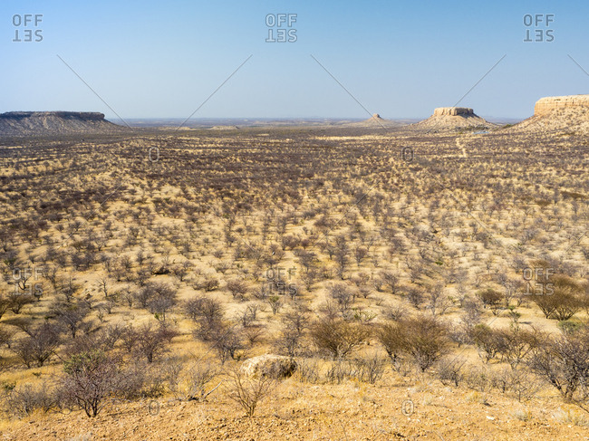 Africa- Namibia- Damaraland- scrubland