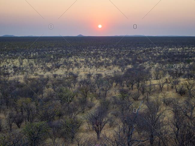 Africa- Namibia- Damaraland- Sunset over scrubland