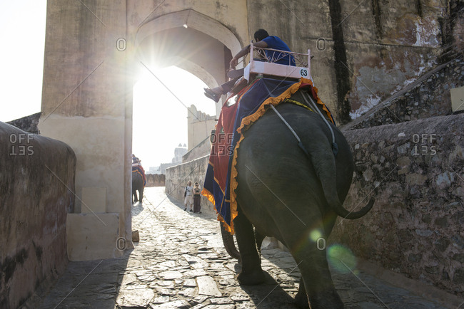 Jaipur, India - 1 July, 2012: Rearview of elephant striding through arch towards Amber Fort