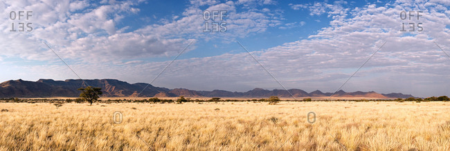 Panoramic view of the Namib Desert, Namibia