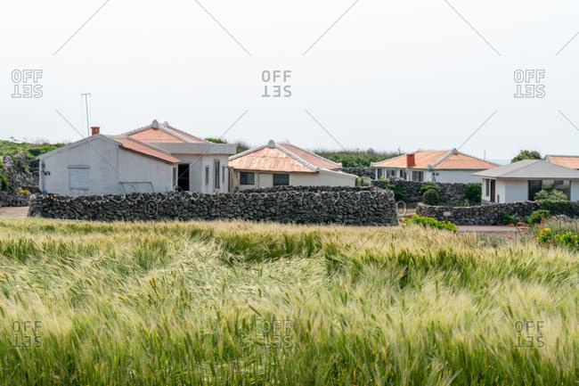 Village buildings, Jejune Island, Korea