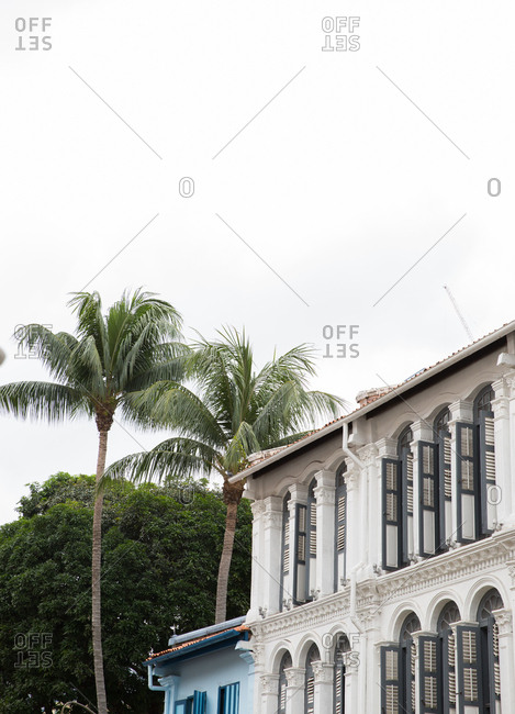 Historic colonial building and palm trees in Singapore
