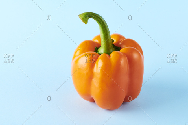 Vibrant pepper propped on complimentary pastel backdrop