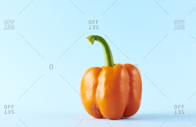Raw pepper with stem on solid color studio background