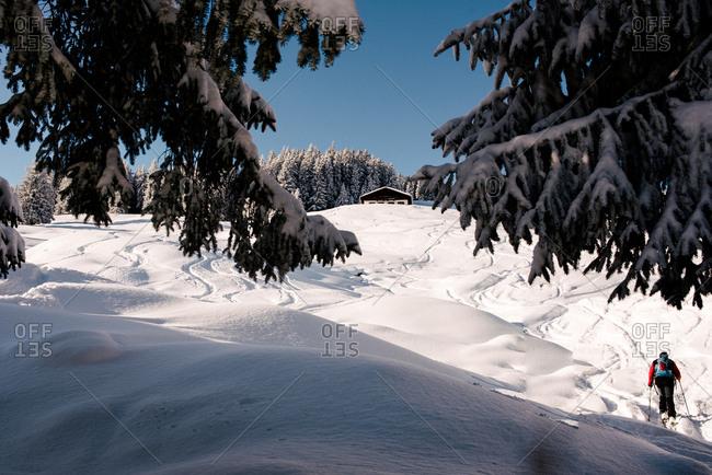 Skier on a slope, Tyrol, Austria