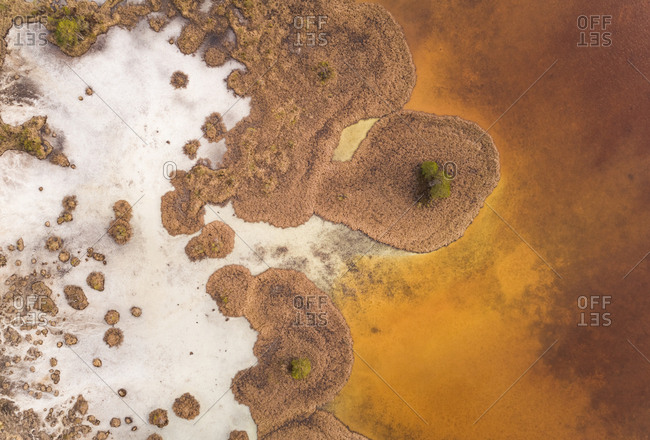 Abstract aerial view of beautiful golden color Valgjarv lake in Estonia