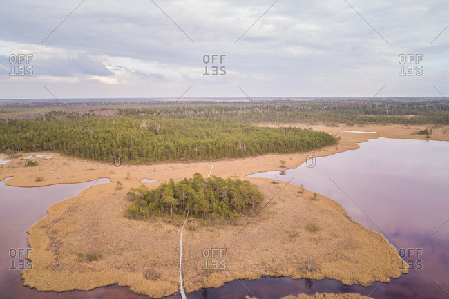 Aerial view of beautiful landscape around Valgjarv lake in estonia