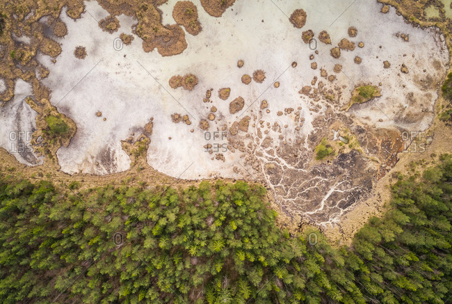Abstract aerial view of frozen parts of lake Valgjarv and forest around it,  Estonia