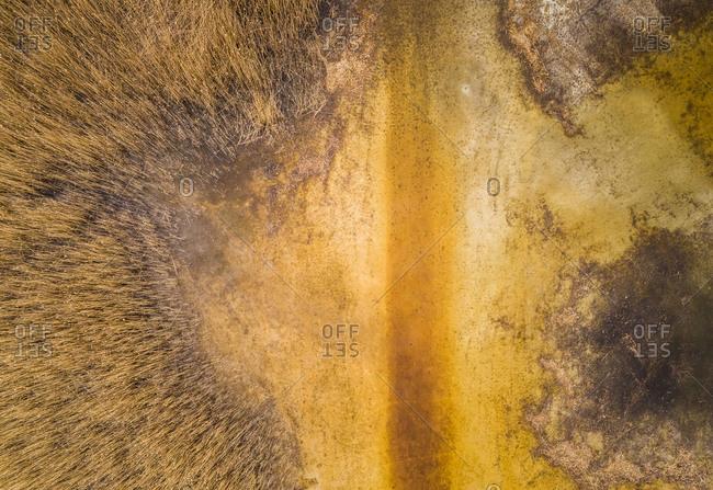 Aerial abstract view of beautiful golden color Prastvike lake in estonia