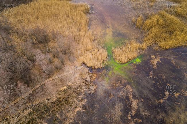 Aerial view of surreal Prastvike lake in Estonia