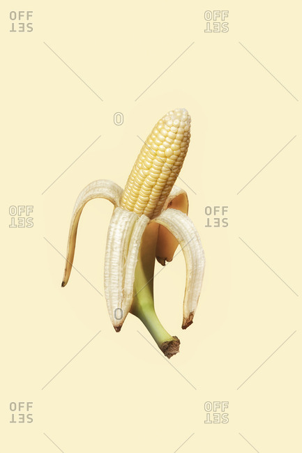 Ear of corn in a banana peel