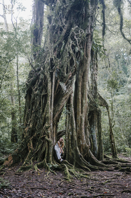 Beautiful woman leaning on roots of a banyan tree
