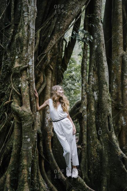 Beautiful woman leaning on a banyan tree