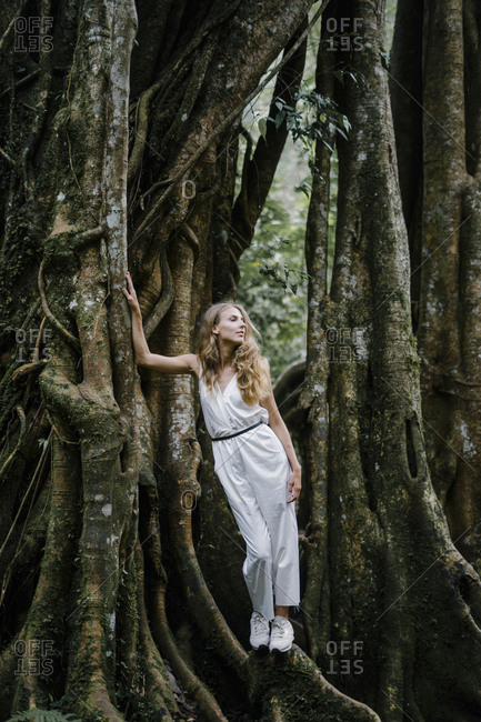 Beautiful female leaning on a banyan tree