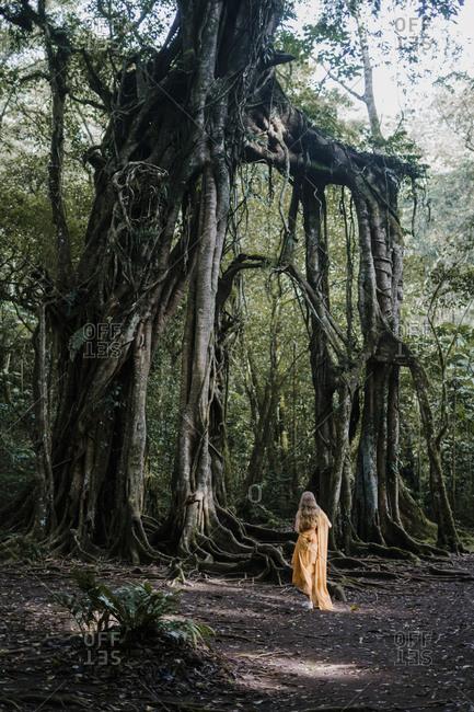 Blonde woman wearing golden dress looking up at banyan trees