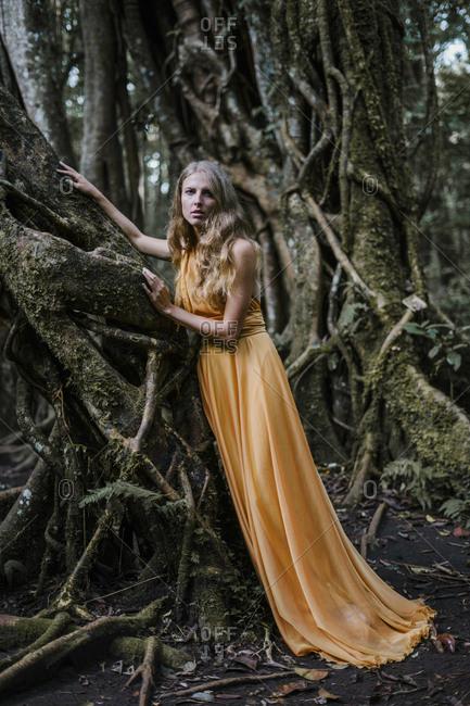 Blonde woman wearing golden dress touching banyan trees