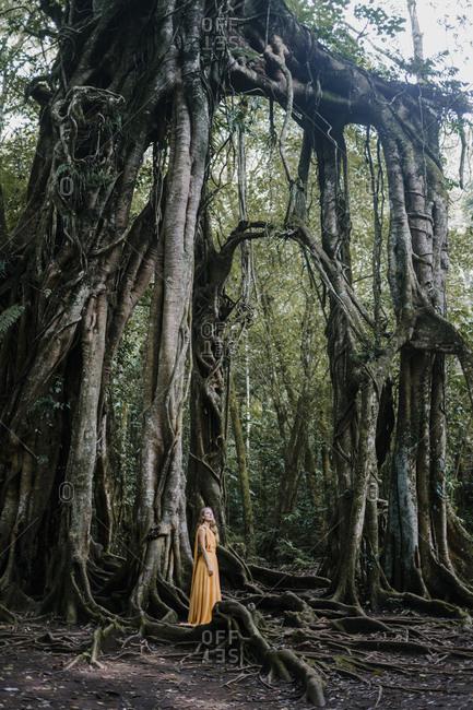 Blonde woman wearing golden dress standing by a banyan tree