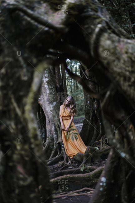 Woman wearing yellow dress standing by a banyan tree holding a fern
