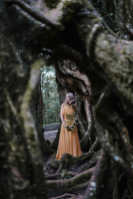 Blonde woman wearing yellow dress standing by a banyan tree