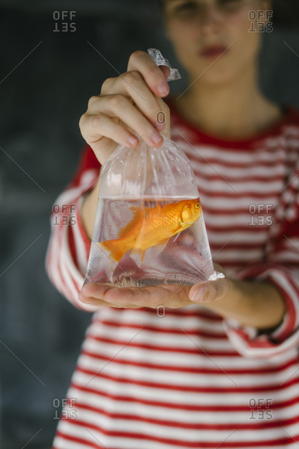Woman showing new goldfish still in bag