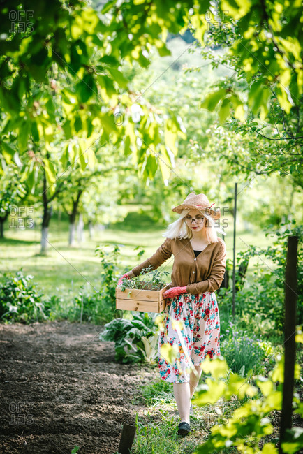 Woman walking in garden carrying wooden box of young plants
