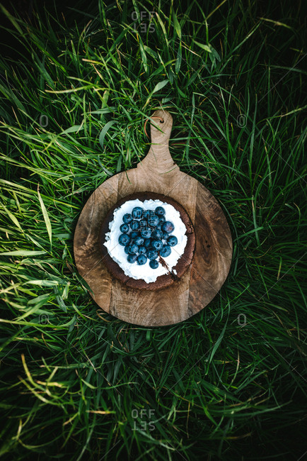 Top down view of chocolate cake topped with blueberries and whipped cream on wooden board on the lawn