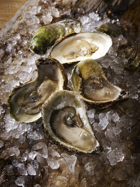 Four halved oysters on ice