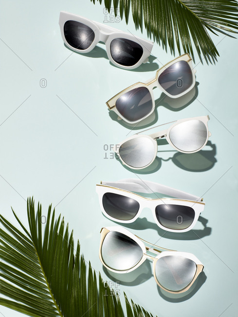 Variety of sunglasses arranged with palm fronds