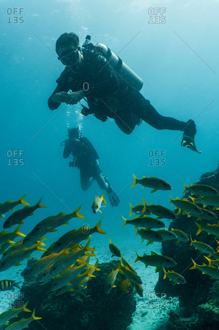 Underwater view of two divers diving close to Phuket, Thailand