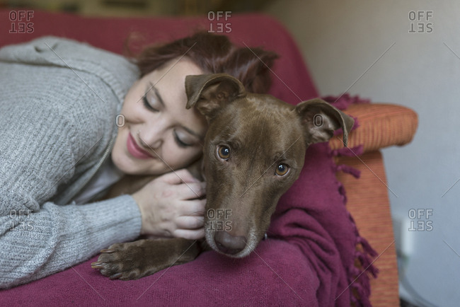 Portrait of dog lying with owner on the couch at home