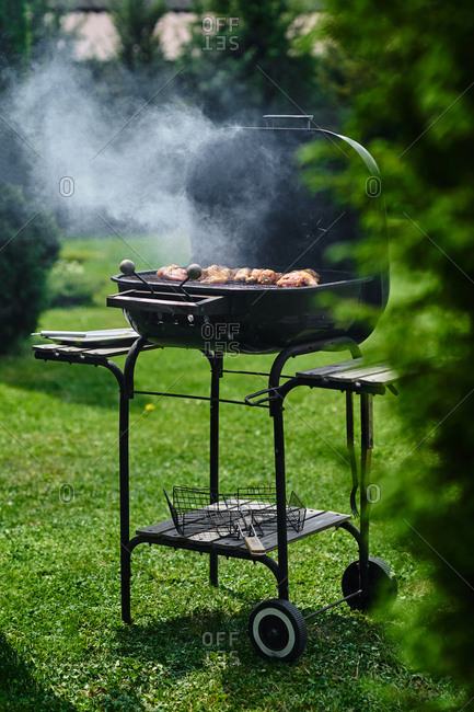 View of open barbecue with grilling chicken in backyard on sunny spring day