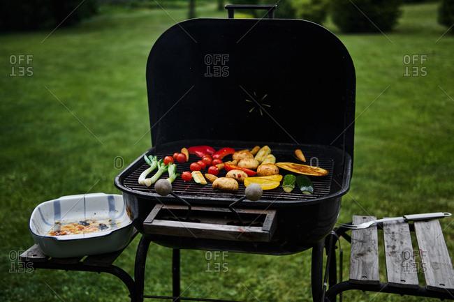 Variety of seasonal vegetables grilling on barbecue in backyard