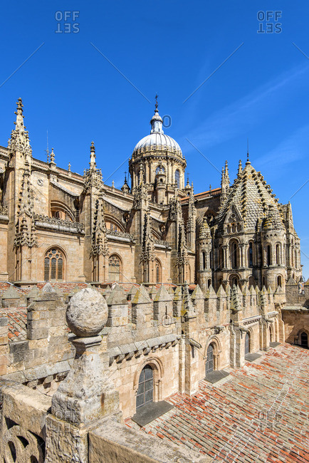 Old Cathedral, Salamanca, Castile and Leon, Spain