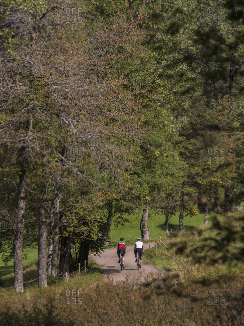 Two men riding racing bicycle on cycling tour in Middle Black Forest, Baden-Wurttemberg, Germany