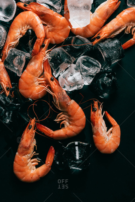 Top view of shrimps and ice cubes on dark surface